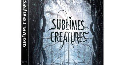 Photo of Sortie du DVD&Blu-ray de Sublimes Créatures le 3 juillet !