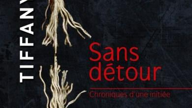 Photo de Sans Détour, de Tiffany Reisz