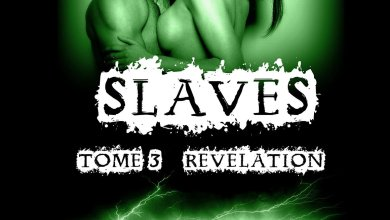 Photo of Slaves Tome 3 : Révélation d'Amheliie