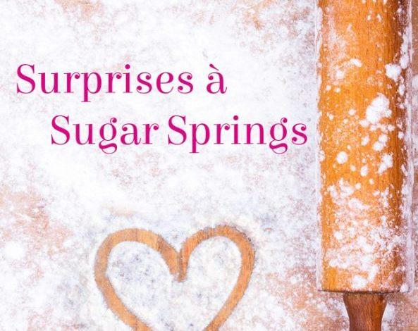 Photo of Surprise à Sugar Springs de Kim Law