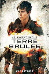 Le Labyrinthe -La Terre Brûlée1