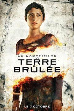 Le Labyrinthe -La Terre Brûlée3