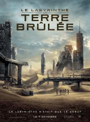 Le Labyrinthe -La Terre BrûléeA