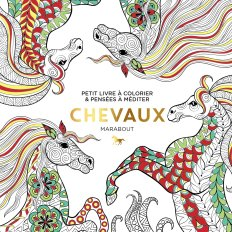 Petit livre à colorier - Chevaux