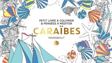 Photo de Du coloriage à gogo chez Marabout en janvier !
