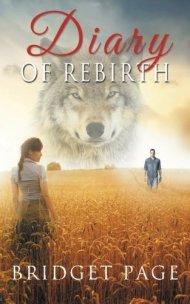 diary of rebirth tome 2 bridget page