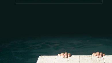 Photo de La vie secrète du fonctionnaire de Arnaud Friedmann