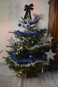 sapin-camille