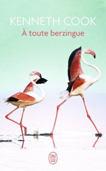 a-toute-berzingue-kenneth-cook