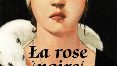 Photo de La Rose Noire : Cinq récits du moyen âge