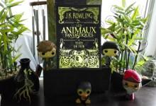 Photo de Les Animaux Fantastiques – Le Texte du Film par J.K. Rowling
