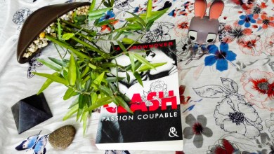 Photo de Clash Tome 2 : Passion Coupable de Jay Crownover