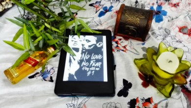 Photo de No Love No Fear Tome 1 : Play with me de Angel Arekin