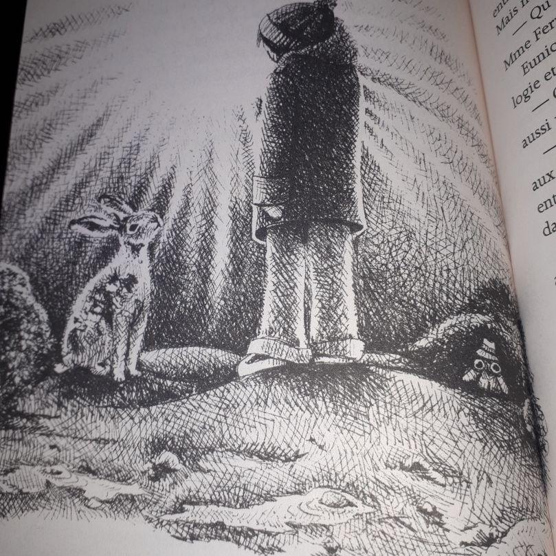 Comment un écureuil un héron Horatio Clare Image perso Charlie 4