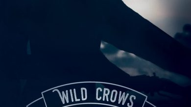 Photo of Wild Crows T3 : Confession de Blandine P. Martin