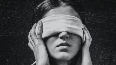 Photo de Bird Box de Josh Malerman