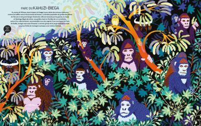 Jungles et Réserves Naturelles du Monde-2