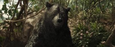 Mowgli 02