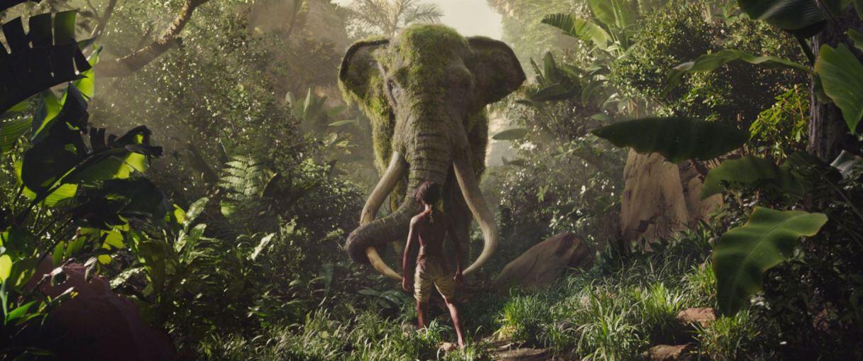 Mowgli 06