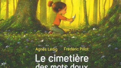 Photo de Le cimetière des mots doux de Agnès Ledig & Frédéric Pillot