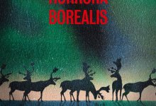 Photo de Horrora Borealis de Nicolas Feuz