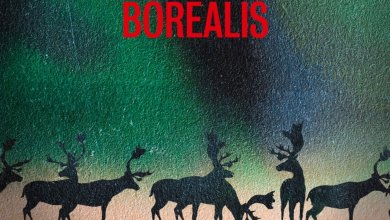 Photo of Horrora Borealis de Nicolas Feuz