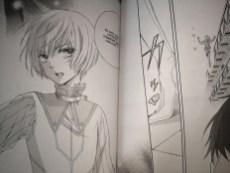 Freya - L'Ombre du prince T01 de Keiko Ishihara
