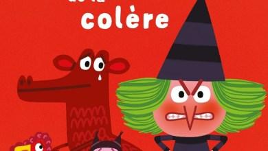 Photo of La petite histoire de la colère de F. Langlois
