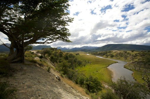 CANAL DE BEAGLE / Route vers l'estancia Harberton