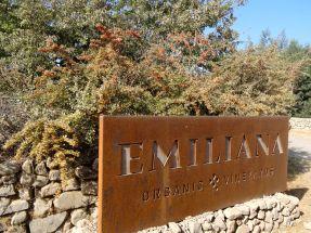 VALLEE DE COLCHAGUA / Visite du domaine Emiliana (bio)