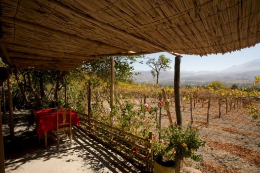 Villaseca : pergola du restaurant solaire