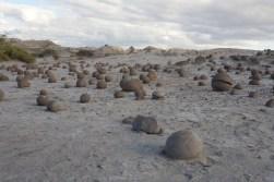 PN Ischigualasto (Valle de la luna) / Champ d'étranges rochers ronds qui mesurent de 15cm à moins d'1m