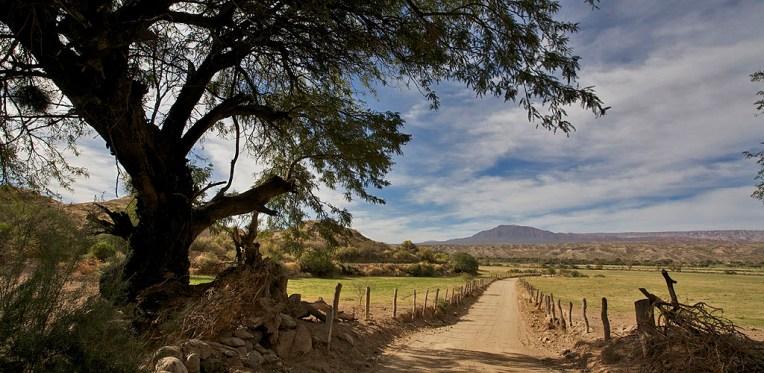 VALLEE CALCHAQUIE / Vers Molinos