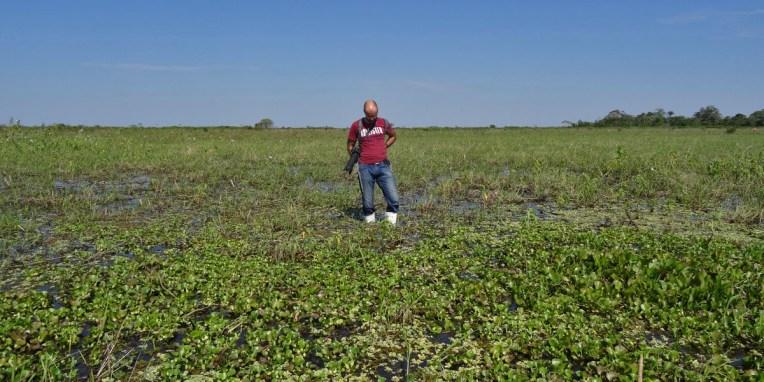 PN MADIDI / Dans les marais de la pampa : notre ami Ronie (Ronald) se demande ce qu'il fait là depuis 2h :-)