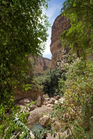 PN TOROTORO / Balade du canyon El Vergel
