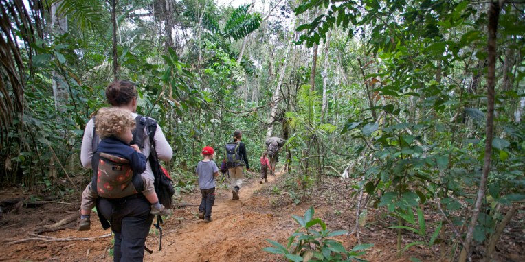 PN MADIDI / 3e jour : retour vers le lodge