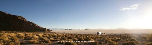 BOLIVIE / Isla Pescado sur le salar de Uyuni