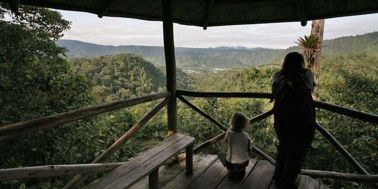 MINDO / Balade dans la jungle des hauteurs de la Yellow House - vue depuis le mirador