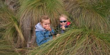 PN CAJAS / Anna et Ellie se cachent dans les hautes herbes :-)