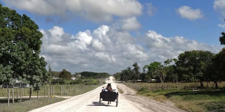 Sur la route de Lamanai, une communauté Mennonite