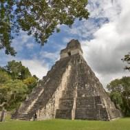 TIKAL / Le temple du Grand Jaguar s'élève à 47m de hauteur