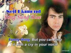 song sung blue lyrics