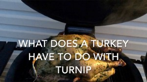 What does a turkey have to do with a turnip?