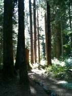 Deception Creek, September 1, 2012, 10 miles, 1200 ft