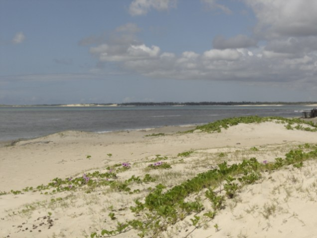 621-4o-dia-litoral-norte-praia-de-zumbi