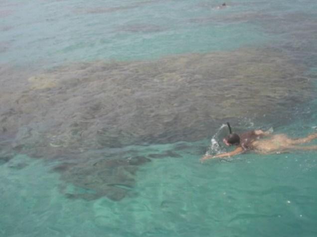 644-4o-dia-litoral-norte-praia-de-maracajau-ma-noa-mergulho-nos-parrachos