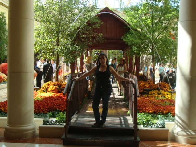 2521 9 dia Nevada Las Vegas Strip - Bellagio Hotel Casino