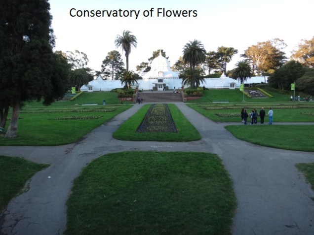 3352 11 dia San Francisco Gonden Gate Park - Conservatório das Flores