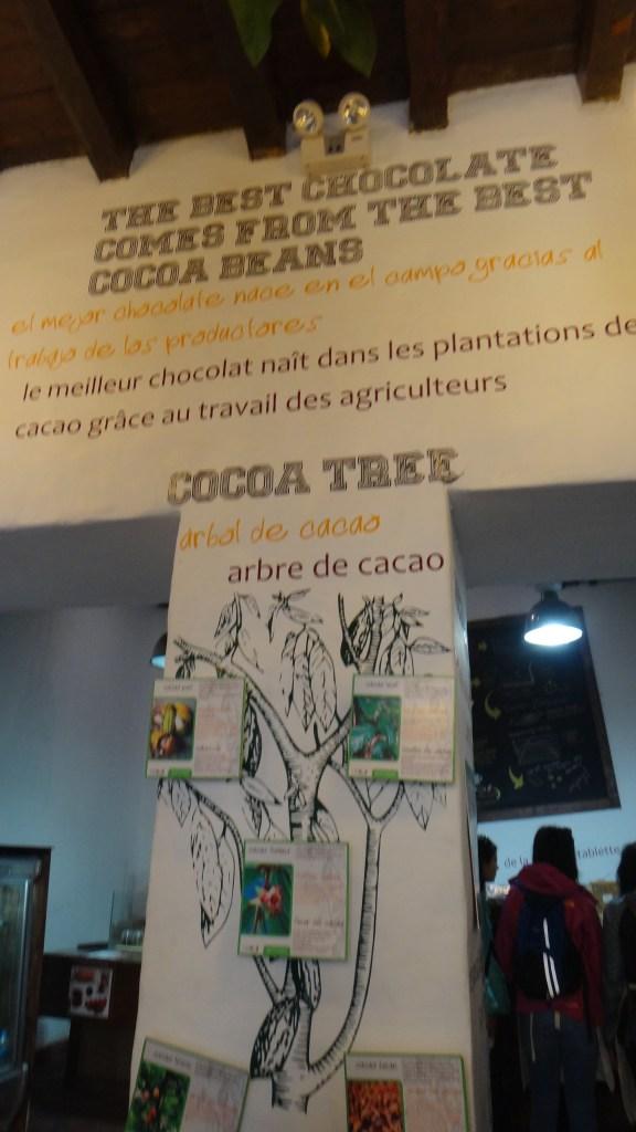 245 2º dia Museo del Chocolate