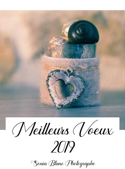 meilleurs voeux 2019 photographe dijon
